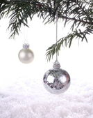 Silver New Years ball on a fur-tree branch — Stock Photo