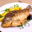 Fried carp on white plate with knife and fork — Stock Photo #22340821
