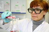 Starsza kobieta jako asystent w laboratorium — Zdjęcie stockowe
