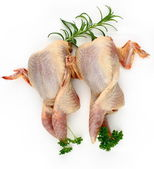 Two quail, prepared with rosemary and parsley — Stock Photo