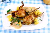 Two fried quail with gravy, gnocchi, rosemary and sauces — Stock Photo