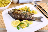 Grilled fish with potatoes, sauce, lemon and cutlery — Stock Photo