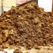 Big pile of manure, as background — Stock Photo