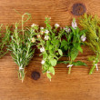 Herbs in bundle on brown wooden background — Stockfoto