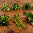 Herbs in bundle on brown wooden background — Stock Photo