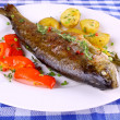 Grilled rainbow trout with red pepper, potato and herbs — Lizenzfreies Foto