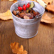 Zinc bucket full of acorn, chestnut and rosehip — Stock Photo