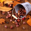 Stock Photo: Zinc bucket with distributed acorn, chestnut and rosehip