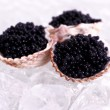 Three shell with black caviar on ice — Stock Photo #37871579