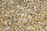 Broken Seashell under water as background — Stock Photo