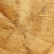 Stock Photo: Sawn timber tree center as background