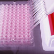 Pipetting with a 12-channel pipette in laboratory — Stock Photo
