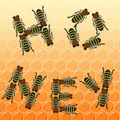 Fleet bees as text on honeycomb, top view — Stock vektor