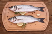 Two fresh moronidae fish on cutting board with ingredients — Stock Photo