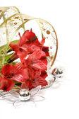 Rode bloemen — Stockfoto