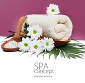 SPA background. Shallow DOF — Stock Photo