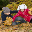 Foto Stock: Children playing with autumn fallen leaves