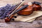 Composição vintage com violino e lavanda — Fotografia Stock
