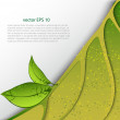 Green leaves abstract background. — Stock vektor