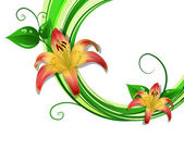 Vector illustration of blooming lilies — Stock Vector