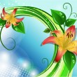 Vector illustration of blooming lilies — Stock Vector #37165033
