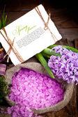 Flowers hyacinths — Stock Photo