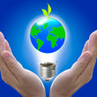 Abstract globe in the light bulb with plant growing up, protect — Stock Photo