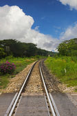 Ferrovia con cielo blu — Foto Stock
