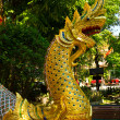 Golden Naga in thai temple — Stock Photo