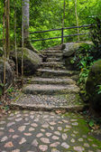 Stone steps that lead to a waterfall in the deep forest. — Stock Photo
