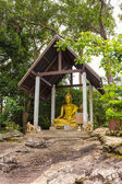 Golden Buddha statue sits on a rock in the shade. — Stock Photo