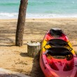 Kayak on beach — Stock fotografie