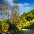 Stock Photo: Road on high mountain