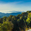 Broad panorama of the highest mountain in Thailand — Stock Photo