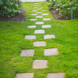 Pathway in garden — Stock Photo #39253907