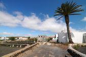 Carretera y una palmera en un cielo nublado — Foto de Stock