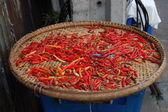 Tailandês pimentas — Fotografia Stock