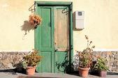 Starý zelený dveře — Stock fotografie