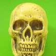 Yellow Skull — Stockfoto