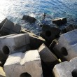Stock Photo: Cubes of Cement Breakwater