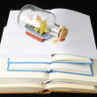 Empty Book — Stock Photo