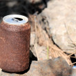 Stock Photo: Rusty Can
