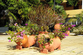 Ceramic garden pot — Stockfoto