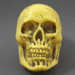 Stockfoto: Yellow Skull