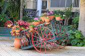 Wagon and Plants — Foto Stock