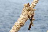Naval Rope on a Pier — Stock Photo