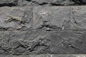 Black Lava Brick Texture — Stockfoto