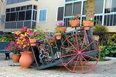 Vagn och växter — Stockfoto