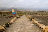 Pathway in the Volcanic Desert — Photo