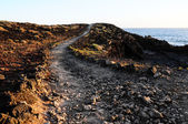Pathway in the Volcanic Desert — Stock Photo